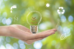 The Evolution of the Environmental Management System